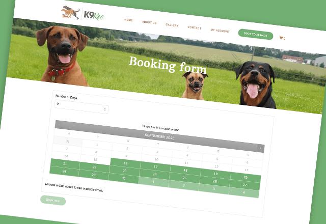 K9-Rec - Website
