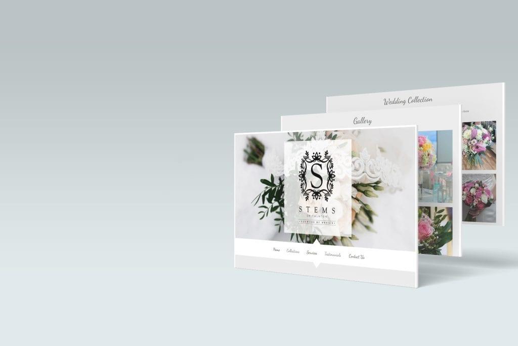Stems website case study